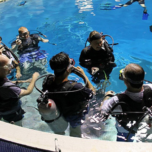 Open Water Dive Courses