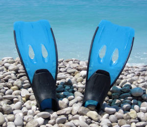 Choose the Right Type of Fins